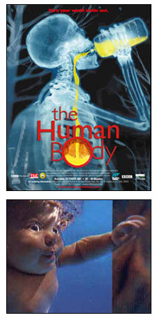 The Human Body h33t t00 h0t preview 0